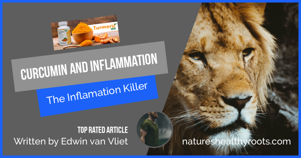 blog picture curcumin and inflammation